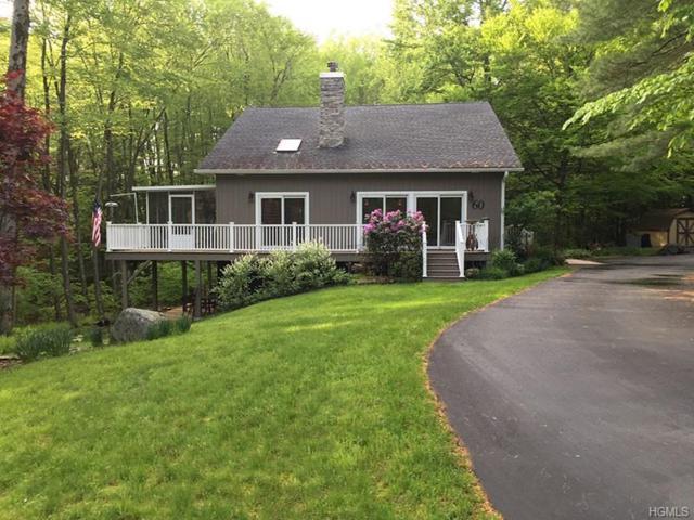 60 Swinging Bridge Estate Road, Monticello, NY 12701 (MLS #4941183) :: Mark Boyland Real Estate Team
