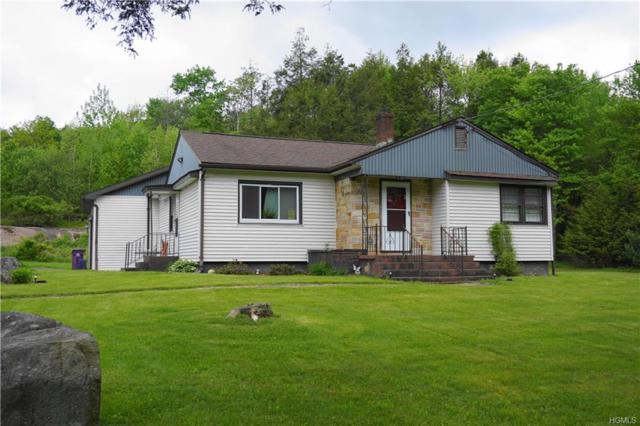 179 Heiden Road, Monticello, NY 12701 (MLS #4941223) :: Mark Boyland Real Estate Team