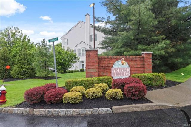 155 Meadow Lane, Nanuet, NY 10954 (MLS #4941258) :: William Raveis Legends Realty Group
