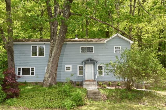 263 Bog Hollow Road, Wassaic, NY 12592 (MLS #4941259) :: Mark Boyland Real Estate Team