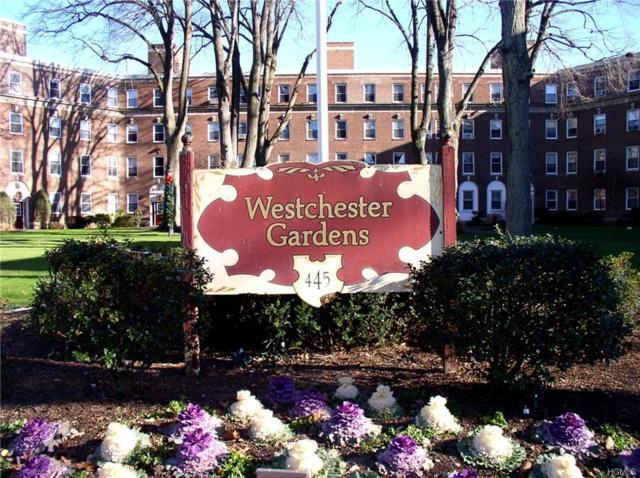 445 Gramatan Avenue G  C-3, Mount Vernon, NY 10552 (MLS #4941647) :: William Raveis Baer & McIntosh