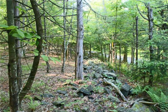 Parcel A Peak Road, Stone Ridge, NY 12484 (MLS #4943120) :: William Raveis Legends Realty Group