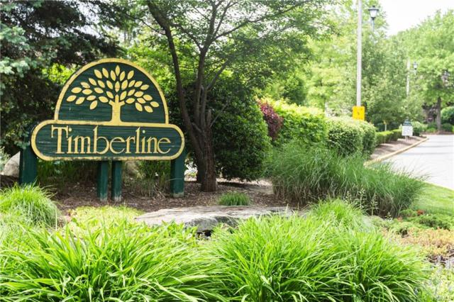 30 Timberline Drive, Nanuet, NY 10954 (MLS #4943340) :: The McGovern Caplicki Team