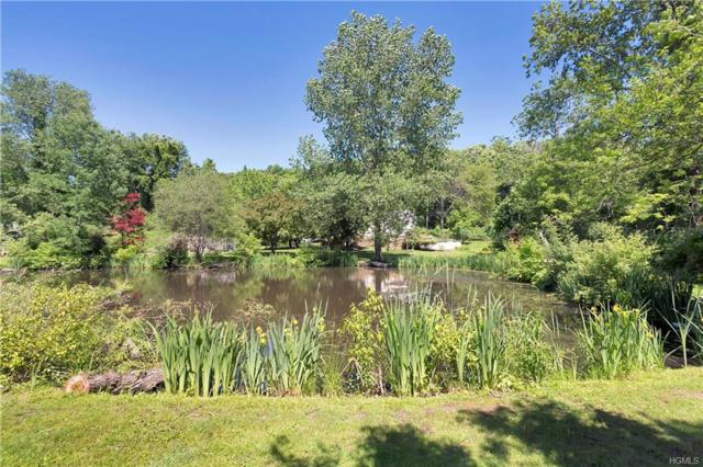 207 Hill Street, Mahopac, NY 10541 (MLS #4943400) :: William Raveis Legends Realty Group