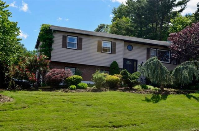 146 Standish Drive, Pearl River, NY 10965 (MLS #4943850) :: William Raveis Baer & McIntosh