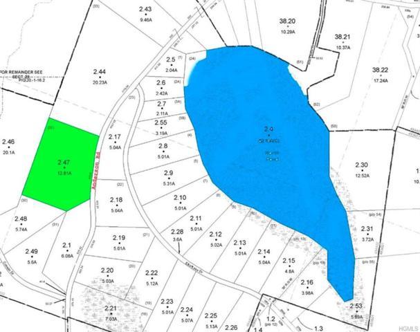 (28.-1-2.47) Anderson Road, Parksville, NY 12768 (MLS #4944021) :: Mark Boyland Real Estate Team