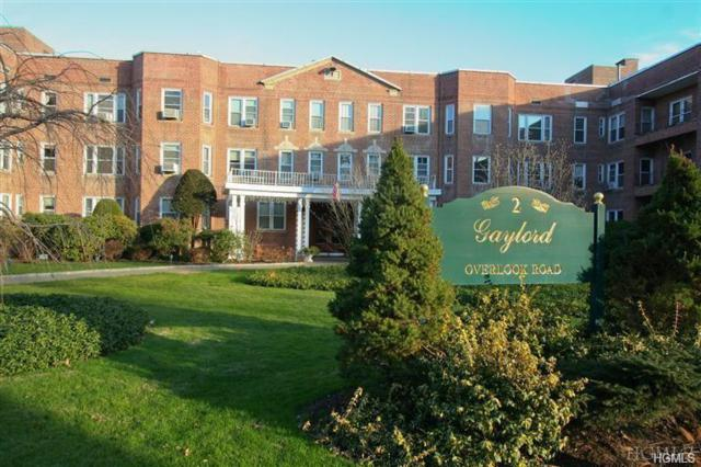 2 Overlook Road 3B7, White Plains, NY 10605 (MLS #4944114) :: Shares of New York