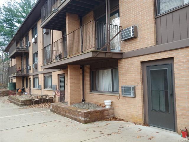 10 Oakwood Terrace #17, New Windsor, NY 12553 (MLS #4944579) :: William Raveis Baer & McIntosh