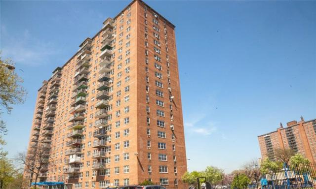 825 Morrison Avenue 13L, Bronx, NY 10473 (MLS #4945453) :: Shares of New York