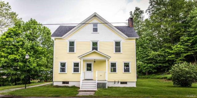 575 N Branch Hortonville Road, North Branch, NY 12766 (MLS #4945525) :: Mark Boyland Real Estate Team