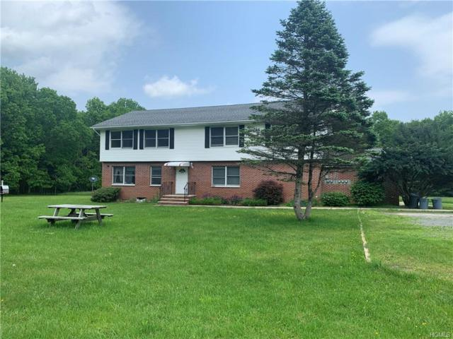 38 Pine Ayre Drive, Eldred, NY 12732 (MLS #4947674) :: William Raveis Legends Realty Group
