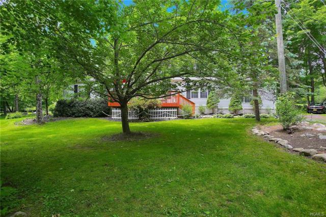 2 Registro Road, Pine Bush, NY 12566 (MLS #4947897) :: William Raveis Legends Realty Group