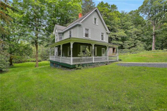 105 Smith Clove Road, Central Valley, NY 10917 (MLS #4947909) :: William Raveis Legends Realty Group