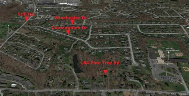 Pine Tree Road, Monroe, NY 10950 (MLS #4948059) :: William Raveis Legends Realty Group