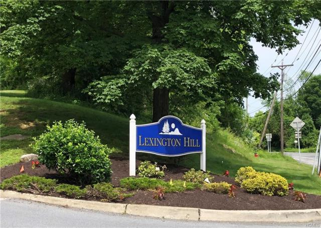 8 Lexington Hill #8, Harriman, NY 10926 (MLS #4948532) :: Mark Boyland Real Estate Team