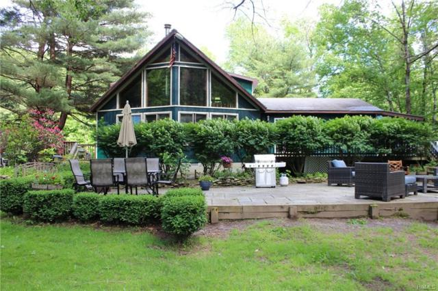 284 Mountain Pass, East Branch, NY 13756 (MLS #4948744) :: William Raveis Legends Realty Group