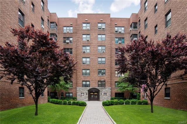 505 E Lincoln #216, Mount Vernon, NY 10552 (MLS #4948865) :: William Raveis Baer & McIntosh