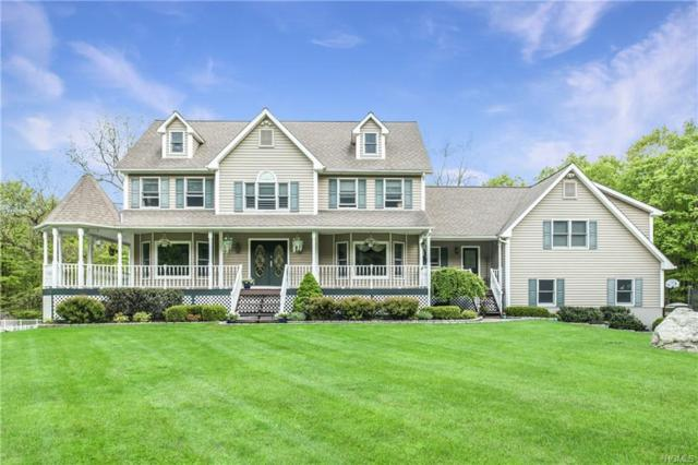 256 Hortontown Road, Hopewell Junction, NY 12533 (MLS #4949493) :: William Raveis Legends Realty Group