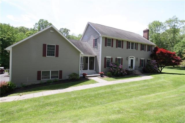 124 S Harmony Hill Road, Pawling, NY 12564 (MLS #4949585) :: William Raveis Baer & McIntosh