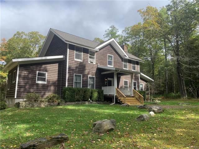153 Mail Road, Barryville, NY 12719 (MLS #4949701) :: Mark Seiden Real Estate Team