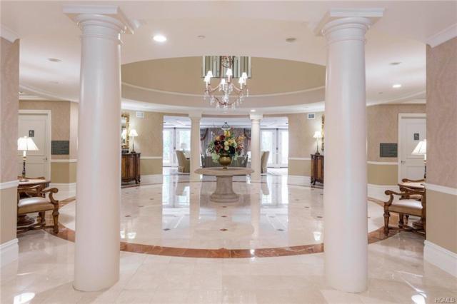 411 Trump Park, Shrub Oak, NY 10588 (MLS #4949734) :: Mark Boyland Real Estate Team
