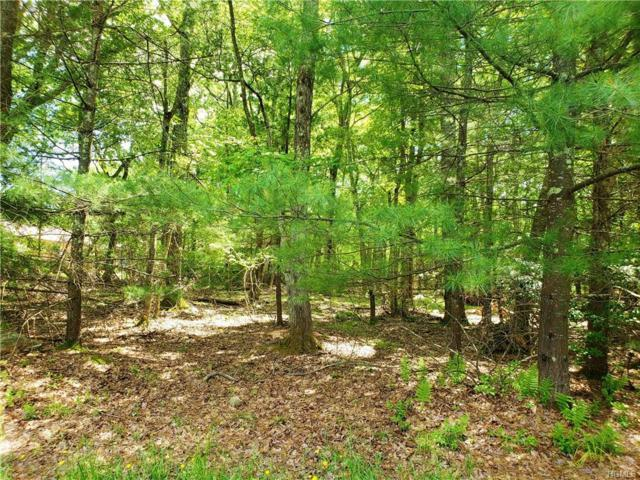 Norfolk Court, Rock Hill, NY 12775 (MLS #4949920) :: Mark Boyland Real Estate Team