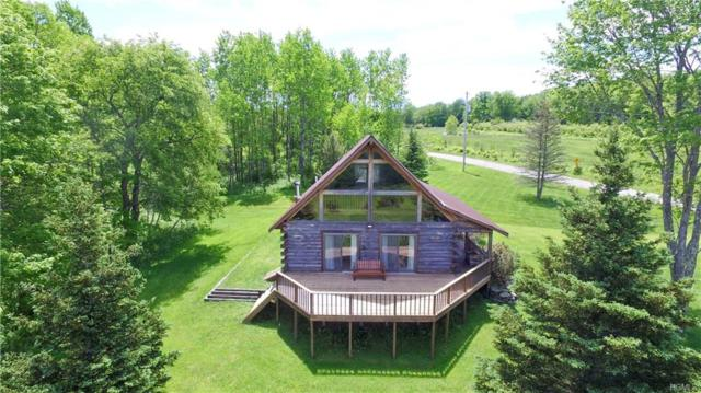 254 Klinger Road, Roscoe, NY 12776 (MLS #4950405) :: Mark Boyland Real Estate Team