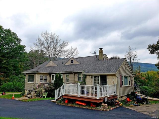 30 Trout Brook Road, Highland Mills, NY 10930 (MLS #4950519) :: William Raveis Legends Realty Group