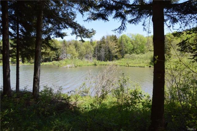00 Bear Gulch Road, Other, NY 12175 (MLS #4950687) :: William Raveis Legends Realty Group