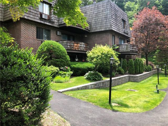 5 Briarcliff Drive S #53, Ossining, NY 10562 (MLS #4950925) :: William Raveis Legends Realty Group