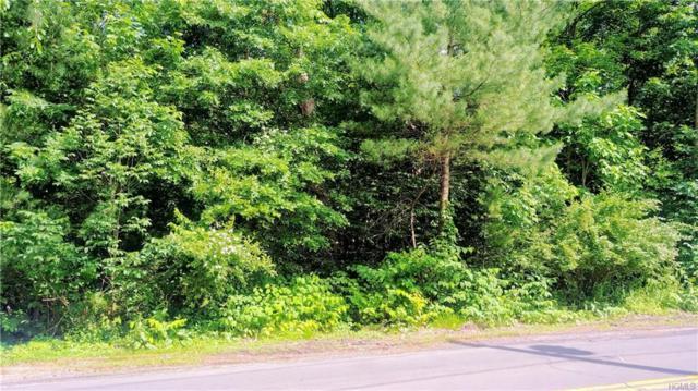 490 S Pascack Road, Chestnut Ridge, NY 10977 (MLS #4951321) :: William Raveis Baer & McIntosh