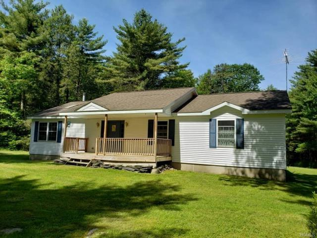 1274 Forestburgh Road, Glen Spey, NY 12737 (MLS #4952200) :: William Raveis Legends Realty Group
