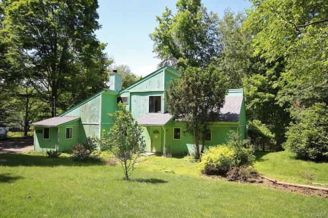 171 Woodcock Mtn Road, Washingtonville, NY 10992 (MLS #4952706) :: The McGovern Caplicki Team