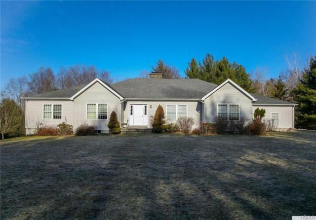 310 Pine Ridge Lane, Hillsdale, NY 12529 (MLS #4953216) :: William Raveis Legends Realty Group