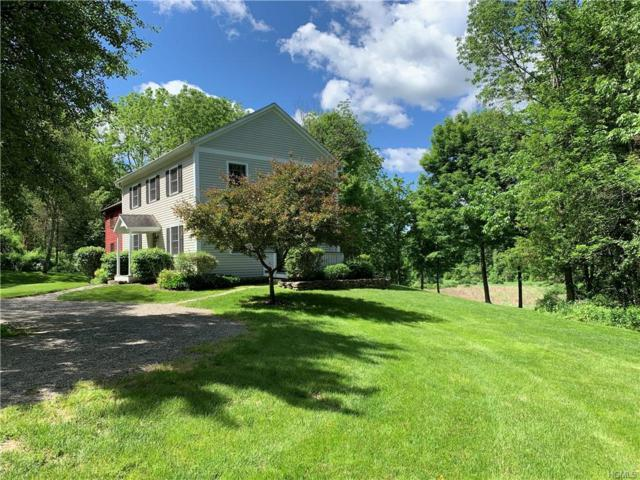 2100 Route 83, Pine Plains, NY 12567 (MLS #4954597) :: William Raveis Legends Realty Group