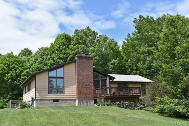 239 Schoolhouse Road, Staatsburg, NY 12580 (MLS #4954756) :: Marciano Team at Keller Williams NY Realty