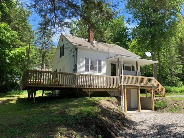 38 Miller Heights Road, Roscoe, NY 12776 (MLS #4954825) :: William Raveis Legends Realty Group