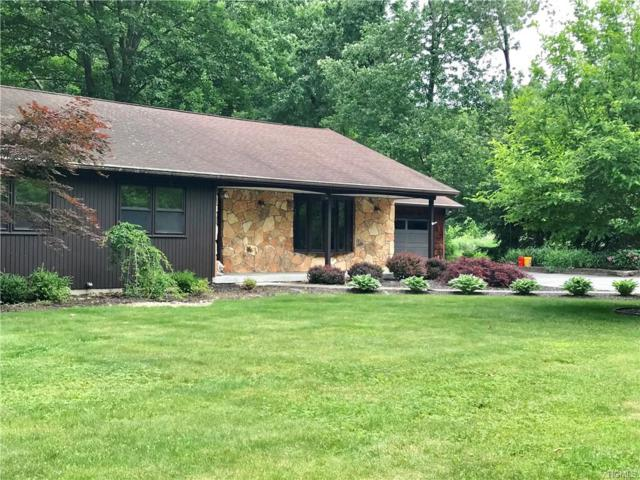 20 Hamilton Road, Hopewell Junction, NY 12533 (MLS #4955027) :: William Raveis Legends Realty Group