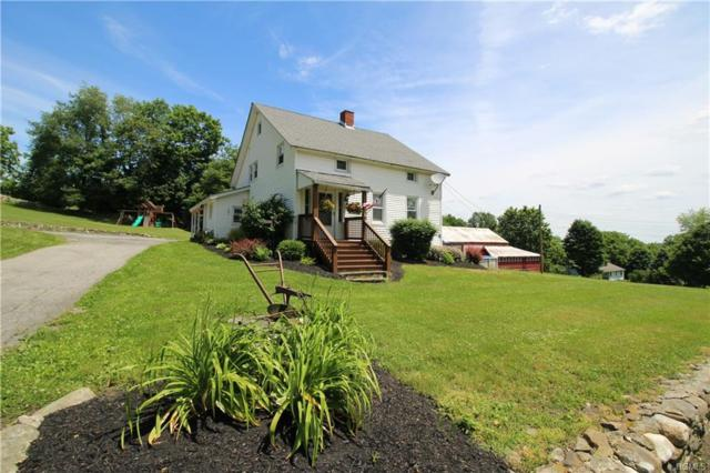2280 County Route 1, Westtown, NY 10998 (MLS #4955053) :: Biagini Realty