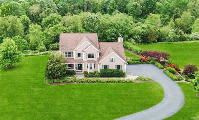 47 Victoria Drive, Poughquag, NY 12570 (MLS #4955531) :: William Raveis Legends Realty Group