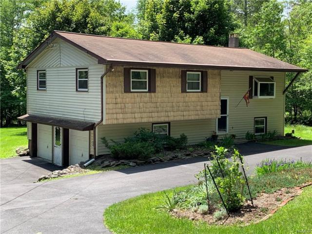 35 Rennison Road, Grahamsville, NY 12740 (MLS #4955572) :: William Raveis Legends Realty Group