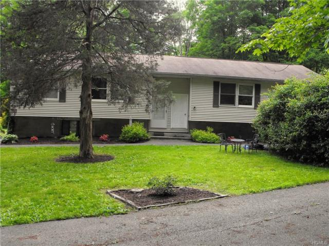 61 Glen Avenue, Dover Plains, NY 12522 (MLS #4955578) :: William Raveis Legends Realty Group