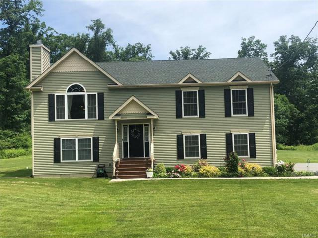 98 Holloran Road, New Windsor, NY 12553 (MLS #4955645) :: William Raveis Legends Realty Group