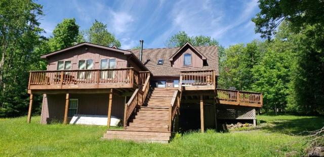 624 Hunter Lake Road, Parksville, NY 12768 (MLS #4955884) :: William Raveis Legends Realty Group