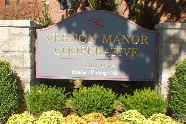 1 Fisher Drive #117, Mount Vernon, NY 10552 (MLS #4956492) :: William Raveis Baer & McIntosh