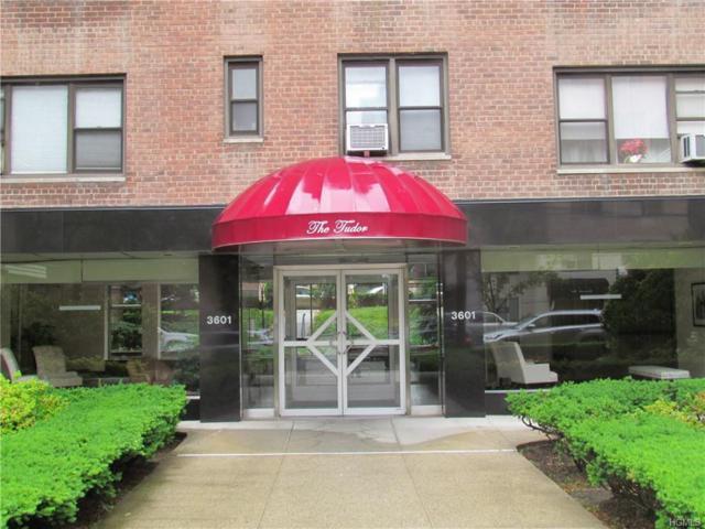 3601 Johnson Avenue Le, Bronx, NY 10463 (MLS #4956550) :: Shares of New York