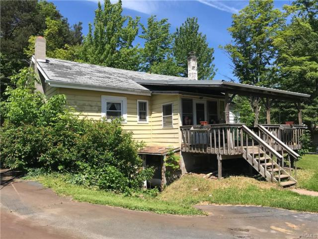 5399 State Route 55, Liberty, NY 12754 (MLS #4956583) :: William Raveis Legends Realty Group
