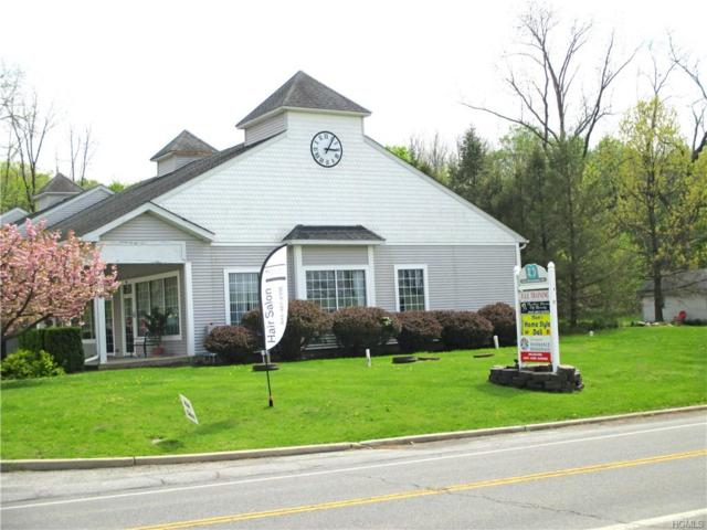 311 State Route 94 S, Warwick, NY 10990 (MLS #4956644) :: William Raveis Baer & McIntosh