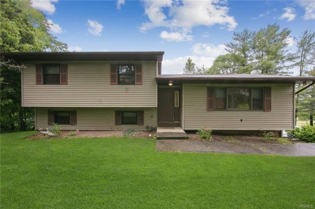 21 Janice Drive, Middletown, NY 10941 (MLS #4956884) :: William Raveis Legends Realty Group