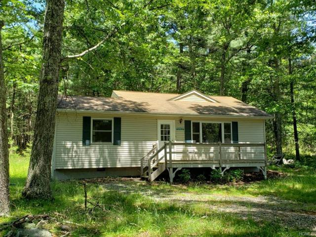 125 Mapes Road, Barryville, NY 12719 (MLS #4956975) :: William Raveis Legends Realty Group